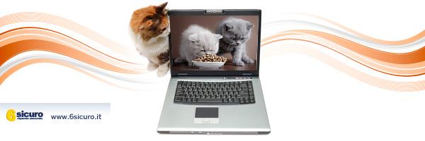 Dai Social Network il cibo per i vostri animali