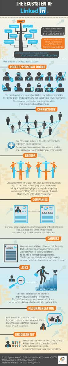 infografica-come-funziona-linkedin