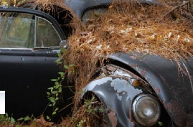 Auto abbandonate: un problema italiano?