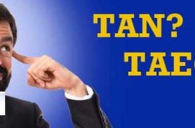 Cosa sono TAN e TAEG? Conoscili e scegli la tua auto!