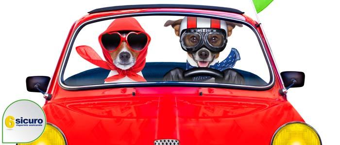 assicurazione auto calo ivass