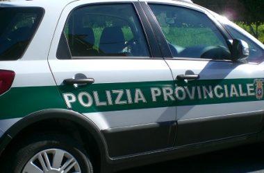 Bollo auto: maxi truffa a Lecce per 70 clienti