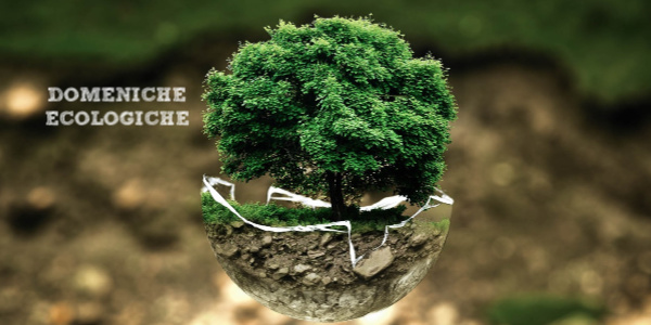 domeniche ecologiche